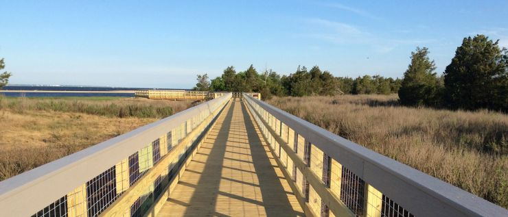 Boardwalk Image